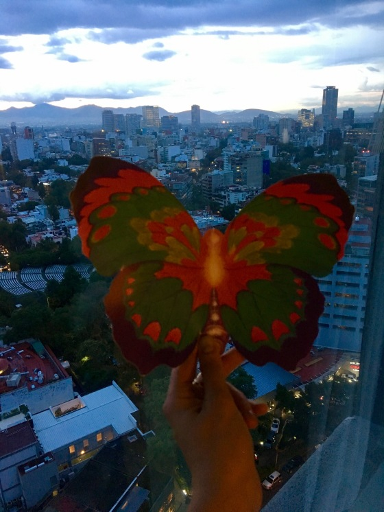 mexico-butterfly